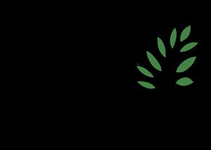 logo 9 300x214